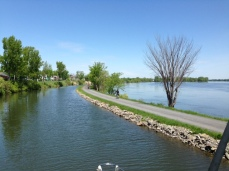 In many places, the narrow canal parallels the Richelieu River, bypassing rapids.  A bike path runs along the canal the entire length, and had hundreds of people were walking or biking along the path on the beautiful Sunday afternoon when we transited the Canal