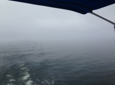 The fog closing in on us in Lake Champlain