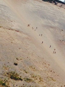 People climbing up and down the dune