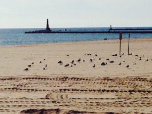 Muskegon has a truly beautiful beach - very wide and perhaps a mile long, the sand is soft and fine, like all of the beaches we've encountered so far along Lake Michigan. The mouth to the harbor is protected by two long breakwaters and is marked with a 70' high lighthouse
