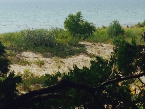 The dunes a few miles from Charlevoix Harbor
