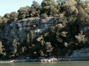 the upper Tennessee River is marked by rock outcroppings as the river carved its way through the landscape