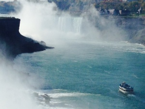 "We went on the ""Maid of the Mist"", a boat that takes you right up to the base of the Falls - be prepared to get very wet!"