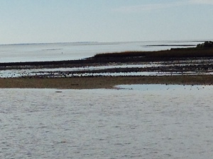 Entering Carrabelle Harbor at low tide -