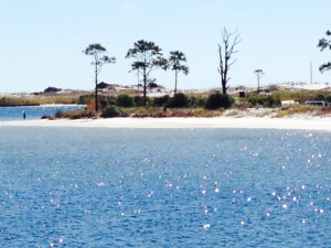 The scenery along the Gulf Intracoastal is sand dunes and palm trees -