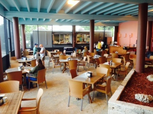 The screened-n eating area at the Flamingo Café.  The food was surprisingly good, and we had alligator tail for dinner (how could you have anything else in this setting...).  The kitchen is housed in a mobile trailer, seen in the background, which can be hooked to a truck and taken elsewhere during hurricane season.