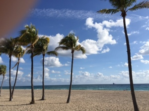 Fort Lauderdale Beach at its best...