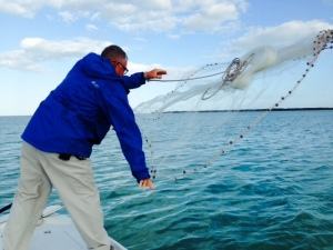 The first order of business on our fishing trip was to catch live bait, which our guide Frank caught with a net.