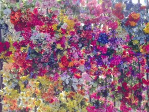 This is actually an entire wall of real flowers