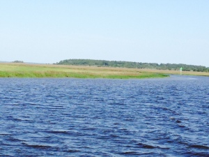 We are still in the Low Country, winding our way through tidal estuaries, bays, creeks, and occasional man-made cuts through the marshes to connect one waterway to the next.