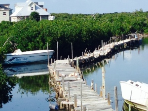 The dock where fishermen bring their catch to the other operation on the island that ships it out - Doug, did you build this?