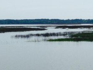 The views of the endless estuaries and salt water marshes in the Low Country are spectacular