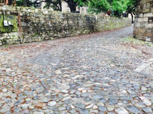 Some of the streets and some of the retaining walls in Savannah, especially along the waterfront, are made of cobblestones from all over the world - they were brought in sailing ships as ballast to add weight and stability to the ships coming to Savannah to take on cargo. The stones were offloaded to make room for the cargo, and were used for paving streets and building walls.