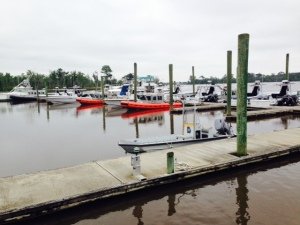 Two Way Fish Marina - in rural Georgia - is a training center for federal law enforcement agents of various types thet are water-based. All of the inflatables and all of the center-consoles (unmarked) are federal training boats. Go figure....