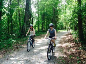 There are 20 miles of hiking and biking trails into the swamp - they started as old logging roads and now provide a way to explore the depths of the swamp. Bikes can be rented at the Visitors Center.