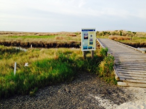 The isolated and beautiful beach is located on the south end of the island and is accessible only from this wooden footbridge over the marsh.
