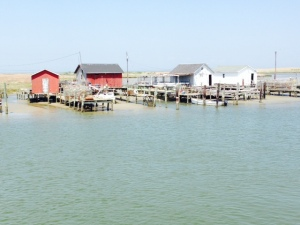A view along the waterfront on Tangier Island