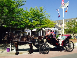 We went for a trolley tour and a horse and buggy tour to see the incredible homes in Cape May
